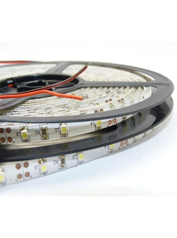 STRIP 3528 300 LED IP65 IMPERMEABILE ROSSO 12V