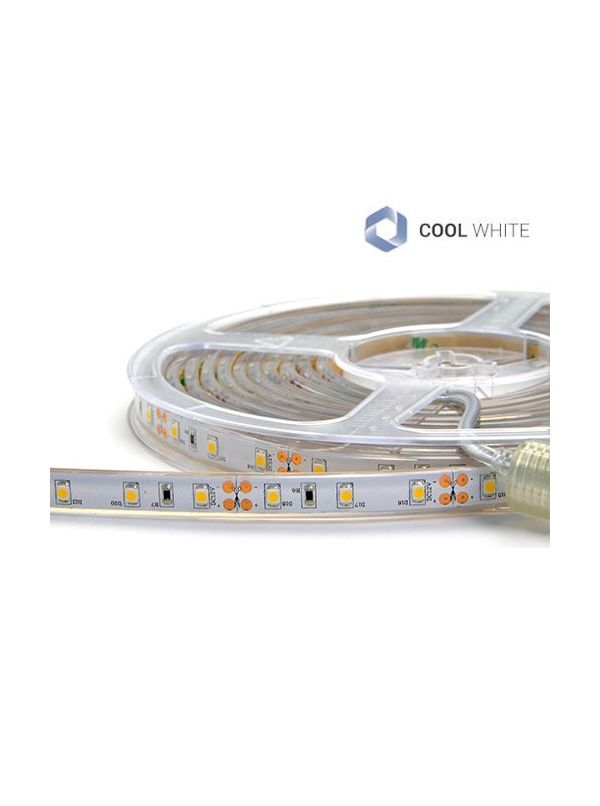 STRIP 3528 300 LED IP67 IMPERMEABILE COOL 12V