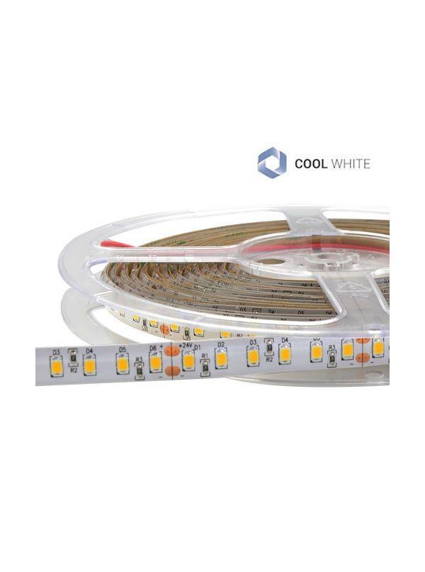 STRIP 600 SMD 2835 IP65 COOL 24V Ra90 IMPERMEABILE